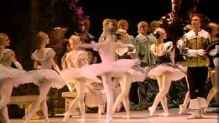 The Sleeping Beauty Op 66 (Ballet en tres actos)